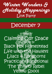 Winter Wonders & Holiday Happenings Features