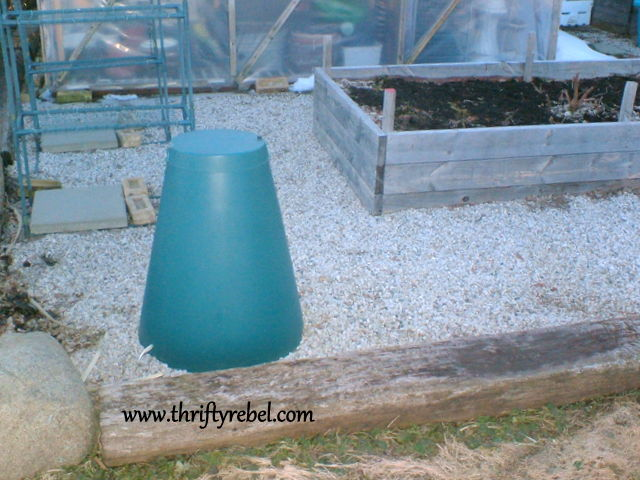 garden-green-cone