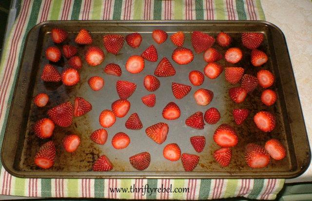 Freezeing Strawberries