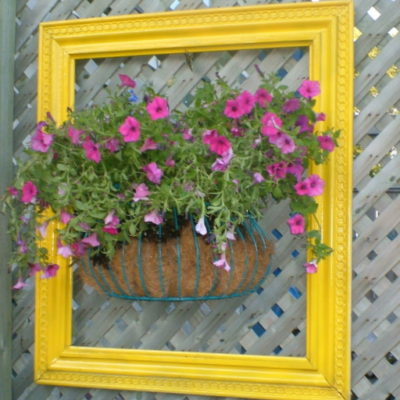 My Flowers Have Been Framed