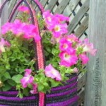 How to Make a Purse Planter