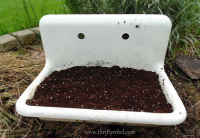 How to use vintage sinks as planters