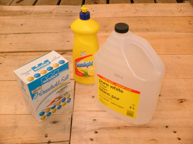 Use Vinegar And Salt As Weed Killer