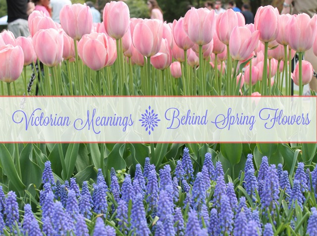 Victorian Meanings Behind Spring Flowers at Adirondack Girl @ Heart #22
