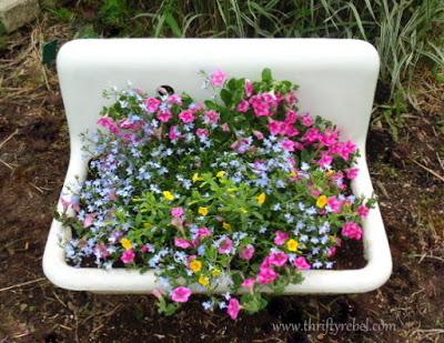 Vintage porcelain sink repurposed as a planter