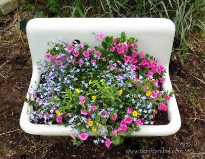 Vintage porcelain sink repurposed as a planter