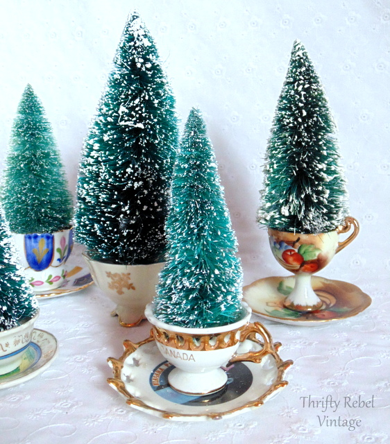 tea-cup-trees-4