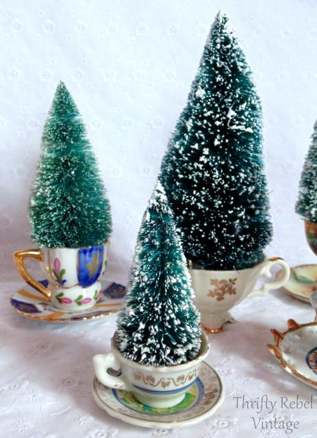 tea-cup-trees-5