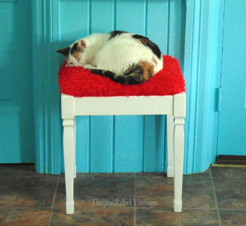 cat sleeping on repurposed scarf bench seat makeover