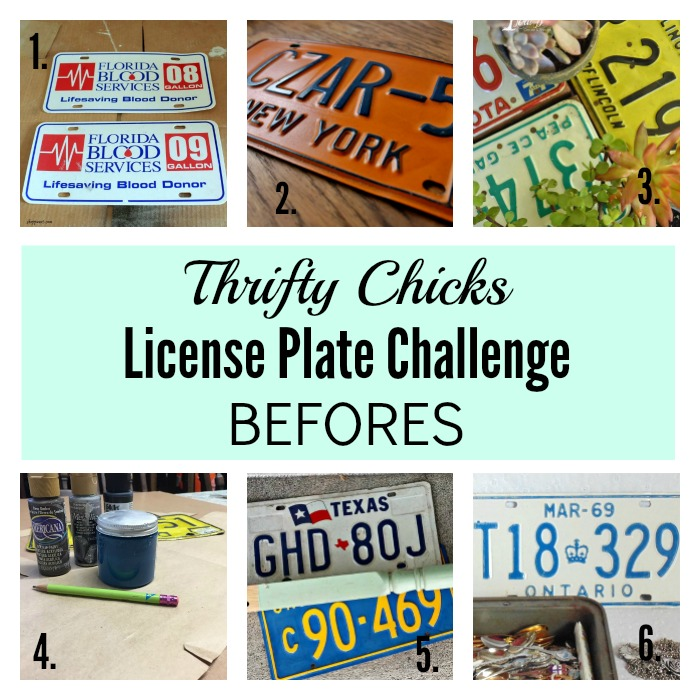 Thrifty Chicks License Plate Challenge