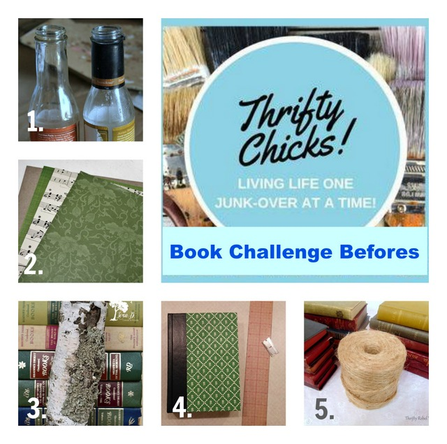 Thrifty Chicks Book Challenge