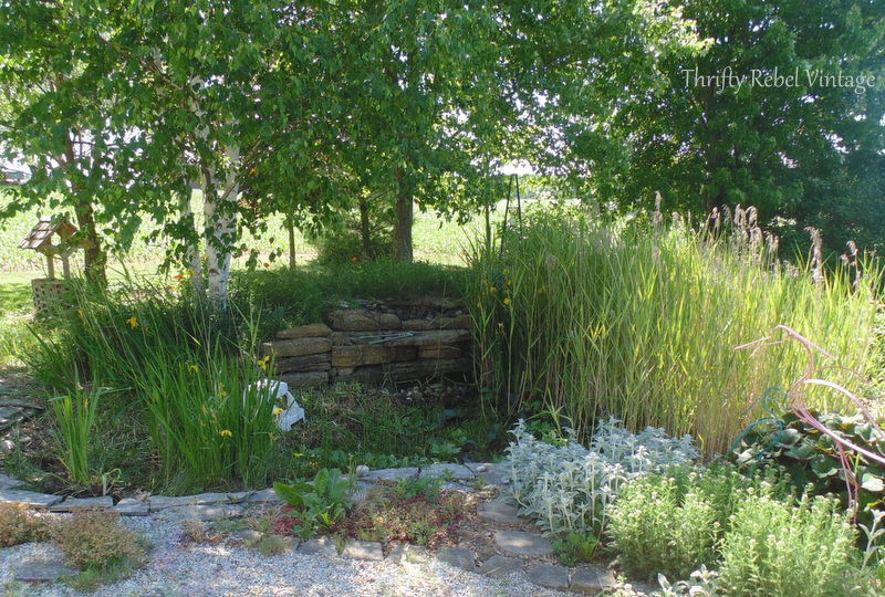 garden pond rescue restoration before pic