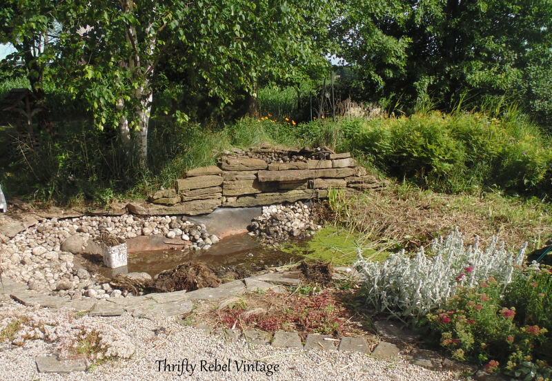 garden pond rescue restoration 8