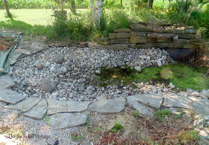 garden pond rescue restoration 9