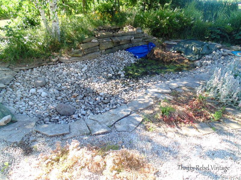 garden pond rescue restoration 94