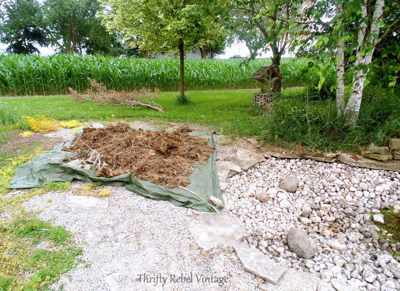 garden pond rescue restoration 96