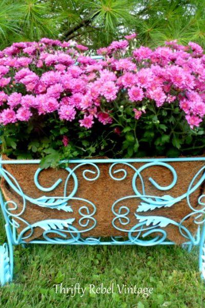 repurposed magazine rack planter planted with pink mums