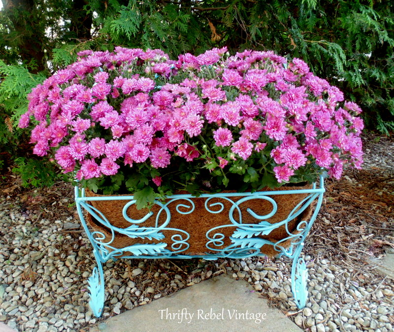 repurposed magazine rack planter with pink mums