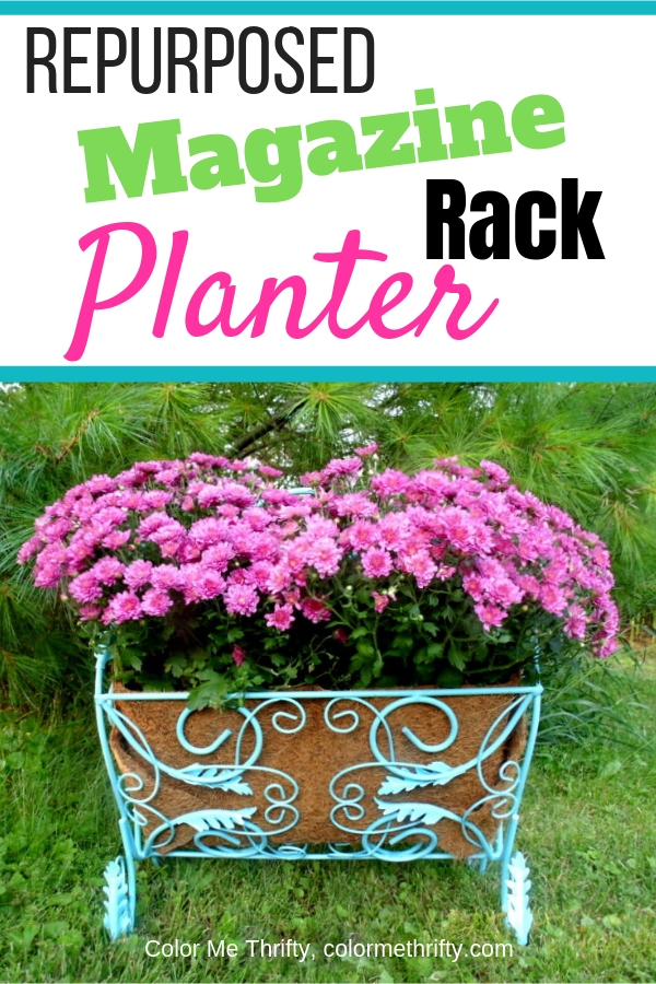 Repurposed magazine rack planter using a little spray paint and some pretty flowers.