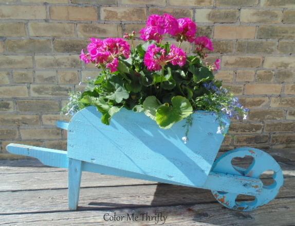 wooden wheelbarrow plant