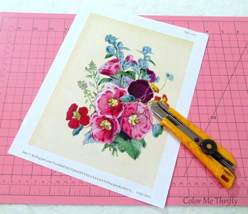 vintage floral graphic printed on regular paper