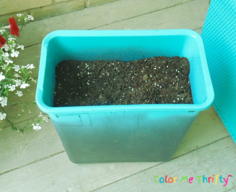 spray painted top area of garbage can aqua blue and added potting soil