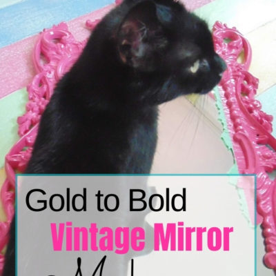 Pepper-helping-to-give-a-vintage-gold-mirror-a-fun-and-easy-makeover-with-spray-paint