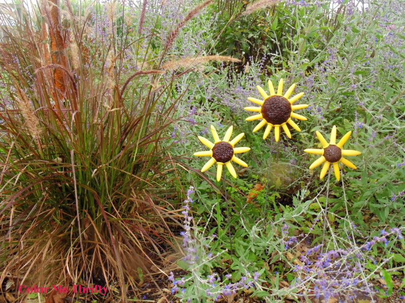 DIY repurposed corn holder flowers for fall displayed in the garden with Russian Sage and an annual fountain grass